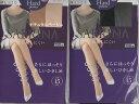 楽天ヘルシークリエーション【新商品】グンゼパンティーストッキングサブリナSB326日本製Made in japan
