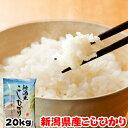 令和元年産 新潟県産 こしひかり 20kg(5kgx4袋) お米 ギフト