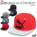 キャップ 帽子 ツバ付き帽子/プーマ puma LS カラーブロック スナップバック キャップ No,052942 05P05Nov16