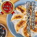 【餃子】【送料無料】生餃子 50個 【セット】【お買い物マラ...