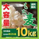 【送料無料】もち麦 10kg(1kgX10個) 29年産/送料無料/韓国産/ダイエット麦ごはんご