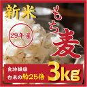 もち麦 3kg 新米29年産【翌日配送】/ヘルシー!旨い!ダイエット麦ごはんご飯 もちむ