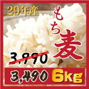 もち麦 6kg 【3kgX2個】新麦29年産 ダイエットもちむぎ 大麦 麦 βグルカンを含有する