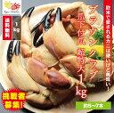 ブラウンクラブ爪下付爪 超特大 総重量1kg / かに カニ 蟹 ボイル ヨーロッパ ボイル