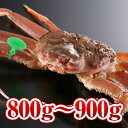 【800g〜900g】活間人かに
