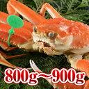 【800g〜900g】間人かに(茹でかに)(湯がき上がり700g〜800g)