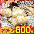 【特大】広島県産特大かき剥き身 約800g