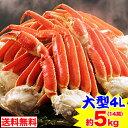 大型4Lボイル本ずわい蟹肩脚 14肩(約5kg)[脚肩|ボイ...