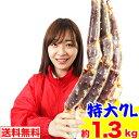 特大7L生たらば肩脚 1肩(約1.3kg)[ 生タラバガニ ...