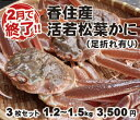 【16-113】香住産 活若松葉ガニ(生) 1箱3枚セット1...