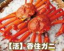 【19-040】活 香住ガニ (約1kg前後)【香住かに 香...