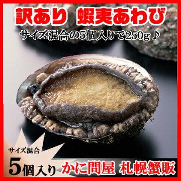 訳あり【北海道産】天然蝦夷あわびを250g(中小5個セット)