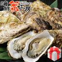 お歳暮 送料無料 牡蠣 殻付き Mサイズ 20個 牡蠣 生食...