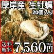 【送料無料】殻付生牡蠣 20個入 北海道厚岸産Mサイズ※出荷日が変更となる場合がございます。※クール冷蔵便のため同梱不可生食 カキ 生ガキ 02P04Jul15