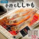 子持ちシシャモ メス 30尾入り(中サイズ) 北海道鵡川・広尾・厚賀・釧路産ししゃもです。脂のりも良く、ご飯のおかずに最適な干物柳葉魚、干し魚。ぷちぷち卵の食感...