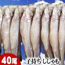 子持ちシシャモ メス 40尾入り(小サイズ) 北海道鵡川・広尾・厚賀・釧路産ししゃもです。脂のりも良く、ご飯のおかずに最適な干物柳葉魚、干し魚。ぷちぷち卵の食感...