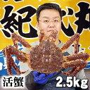 大型かに 活たらばがに オス 2.5kg前後 茹でたてなら到着後、すぐ食べられる未冷凍のたらば蟹です。活カニならではのお刺身用でも食べられます。焼きガニ、蒸し蟹もできる活タラバガニ/活けタラバ蟹