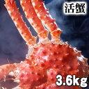 北海道産 特大かに 活たらばがに オス 3.6kg前後 茹でたてなら到着後、すぐ食べられる未冷凍のたらば蟹です。活カニならではのお..
