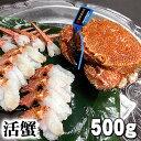 活毛ガニ 北海道産  500g前後 中型 毛蟹の美味しさを味わうなら、未冷凍(冷蔵)の活け毛蟹。茹で...