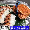 活毛ガニ 北海道産 500g前後 5尾入り 中型 毛蟹の美味...