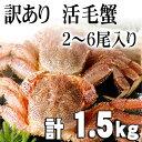 北海道産訳あり 活毛蟹 3〜6尾入りで合計1.5kg前後(大きさそれぞれ異なります)毛ガニの美味しさを味わうなら、未冷凍の活蟹。足折れ、サイズ規格外のわけあり品毛がにです。活毛ガニでかにお刺身用、焼きガニが食べられます。