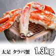 タラバガニ たらばがに足 1.3〜1.5kg ボイル冷凍 アラスカ産 たらば蟹贈答用のかに足です。タラバ蟹の身は甘みがあり、かに飯や、焼きガニも美味しい。グルメカニ通販、北海道グルメ食品 魚介類・シーフード カニ タラバガニ ボイル(ギフト)