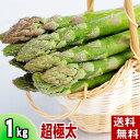 (送料無料)超極太3Lサイズ グリーンアスパラ 1kg前後 美味しい旬の北海道産あすぱらを産地直送。アスパラガスが食べられるのは春だけ。アスパラベーコンなど料理多彩。北海道グルメ食品 野菜・きのこ アスパラガス グリーンアスパラガス(ギフト用)