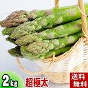 (送料無料)超極太3Lサイズ グリーンアスパラ 2kg前後 美味しい旬の北海道産あすぱらを産地直送。早朝採れたてアスパラガスが食べられるのは春だけ。アスパラベー...