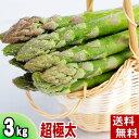 (送料無料)超極太3Lサイズ グリーンアスパラ 3kg前後 美味しい旬の北海道産あすぱらを産地直送。早朝採れたてアスパラガスが食べられるのは春だけ。アスパラベーコンなど料理多彩。北海道グルメ食品 野菜・きのこ アスパラガス グリーンアスパラガス(ギフト用)
