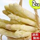 (送料無料)ホワイトアスパラ M〜2Lサイズ混合 2kg美味しい旬の北海道産白いあすぱらを産地直送。ホワイトアスパラガスが食べられるのは春だけ。アスパラベーコンなど料理多彩