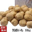 (送料無料) じゃがいも 男爵いも 10kg(芋・新ジャガイモ) 北海道富良野美瑛町産のジャガイモ、男爵芋です。肉じゃが、じゃがバター、コロッケの調理に。北海道グルメ食品 野菜・きのこ ジャガイモ 男爵芋