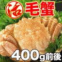 毛ガニ 活毛ガニ 1尾 (350〜400g前後) 北海道近海産 冷蔵 かに 毛蟹 活かに 活蟹 かにみそ 刺身用にも最適 ギフト 贈答 父の日 母の日