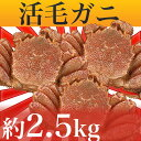 毛ガニ 訳あり 活毛ガニ 5〜8尾セット (合計約2.5kg) 北海道近海産 冷蔵 かに 毛蟹 活かに 活蟹 かにみそ 刺身用にも最適 ギフト 贈答 父の日 母の日