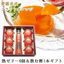 【ギフト こだわり】柑橘 新鮮 飲む酢 ブラッドオレンジ 果...