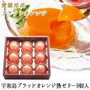 宇和島ブラッドオレンジ熟ゼリー9個入りZ-30