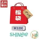 【K-POP・韓流】 SHINee 福袋 3000円★グッズ...