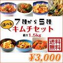 【初めてのお客様】のためのお試しセット 送料無料!韓菜カンナのキムチ■7種(標準量)