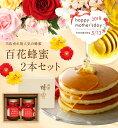 【母の日ギフト】蜂蜜ギフトセット(国産百花蜂蜜500g×2本ギフトセット)蜂蜜専門店