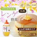 国産蜂蜜 【送料無料】九州レンゲ蜂蜜(はちみつ) とんがり容器入り 1000g れんげ蜂蜜蜂蜜専門店 かの蜂