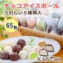 チョコアイスボールセット(65粒入) (短冊のし) ギフト