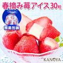 【送料無料】袋包装 苺アイスクリームセット(30粒入)...