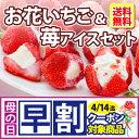 【 送料無料 】お花のようないちごアイス&苺アイスクリームセット ギフト (短冊のし)
