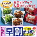 【送料無料】生チョコアイスクリーム&苺アイスクリームセット (短冊のし) ギフト