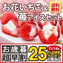 【 送料無料 】お花のようないちごアイス&苺アイスクリームセ...
