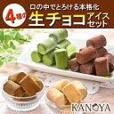 4種の生チョコアイスクリームセット (短冊のし) ギフト