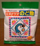 【送料・代引き手数料 無料です!】エキナケアのど飴◆15粒入り×20袋セット『注目30選』