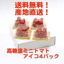 高糖度ミニトマト アイコ 4パック入り とまおとめ 送料無料