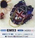Em53_1