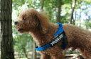 機能性抜群ハーネス【Julius-K9】ユリウスケーナイン・IDCベルトハーネス Miniサイズ 小・中型犬用サイズ