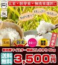【新米入荷】【送料無料】 29年産 新潟産マイスター特選こし...